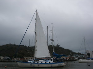 New Main Sail Hoisted up and looking ready to go