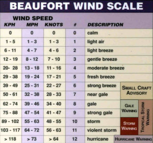 THE BEAUFORT SCALE   IS A MEASURE OF WIND SPEED DESCRIBING VARIOUS BREEZE,GALES,STORMS