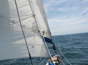 THE STAY SAIL IS THE SAIL CLOSER TO US IN THE PICTURE AND THE GENOA IN THE FRONT THAT HAS LOTS OF RIPS