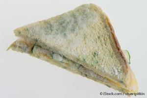 I AM ASSUMING THIS IS WHAT JEFF'S SANDWICH LOOKED LIKE WITH A BIT OF MOLD OR LOTS!!